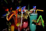 cocktailDSC_3525